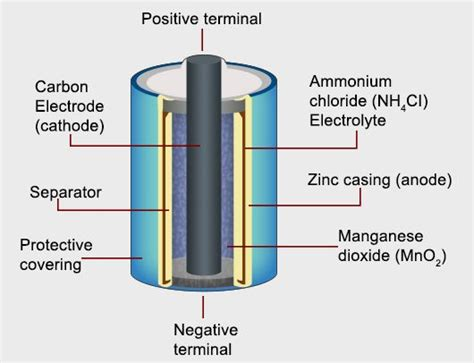 Battery Cell Diagram understanding the working principle and uses of a cell