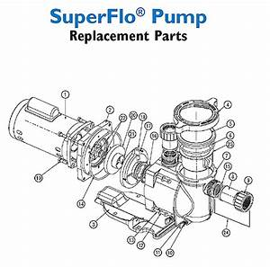 Pool Parts   Pool Pump Motor Supp