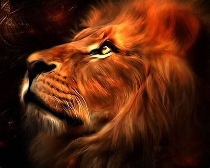 Lion Wallpapers Sanny Abstract Wallpapersafari Code