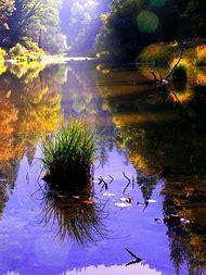Nature Inspiration Photography