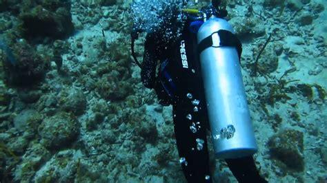 st thomas scuba diving  youtube