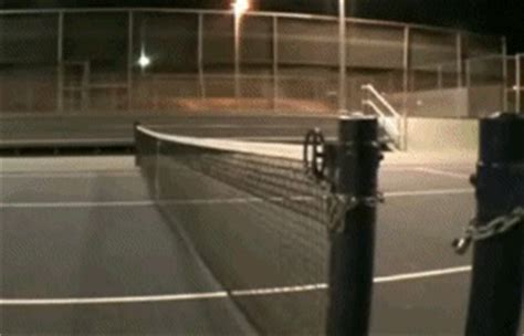 funniest tennis fail gifs total pro sports