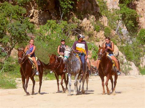 horseback cabo beach riding san lucas