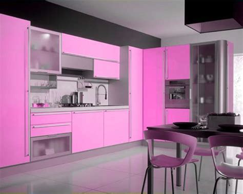 pink kitchen ideas pink kitchen decorating ideas in elegant style mykitcheninterior