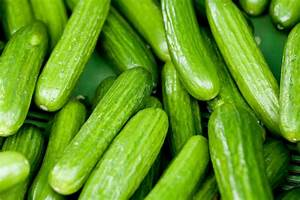 Getting to Know Cucumbers Part 3 of 3: A Guide to Cucumber ...
