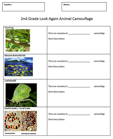 animal camouflage comic sjl plymouth tech page