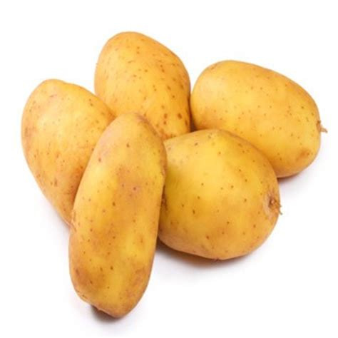 cuisiner les pommes de terre la pomme de terre préparer cuire associer cuisiner