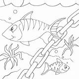 Coloring Fish Chain sketch template