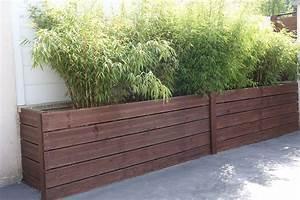 bambou en pot pour terrasse With bac pour bambou terrasse