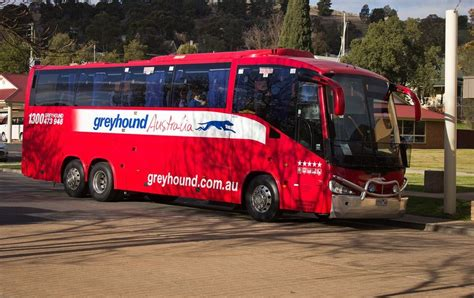 australia greyhound bus passes australia by bus