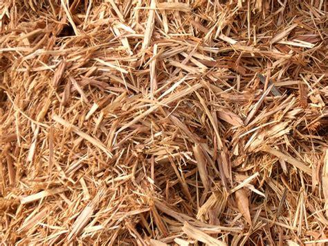 cedar chip mulch dirt cheap of nc mulch