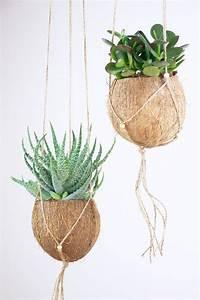 Indoor Grow Anleitung : 25 best ideas about grow room on pinterest plants apartment plants and indoor solar lights ~ Eleganceandgraceweddings.com Haus und Dekorationen