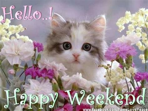 Happy Weekend Wishes And Quotes Images  Best Weekend Text