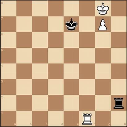 Chess Complete Guide Endgames Blocking Checks Pawn
