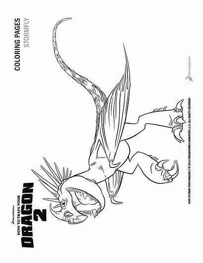 Dragon Train Coloring Stormfly Colorare Trainer Disegni