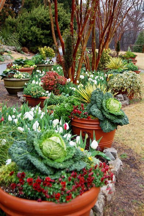 Clay Vegetable Gardening In Pots  1889 Hostelgardennet