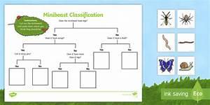 Tree Diagram Minibeasts Ks2