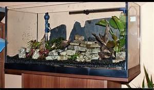 Aquarium Dekorieren Ideen : aquarium von stony becken 112 l nur noch als beispiel ~ Bigdaddyawards.com Haus und Dekorationen