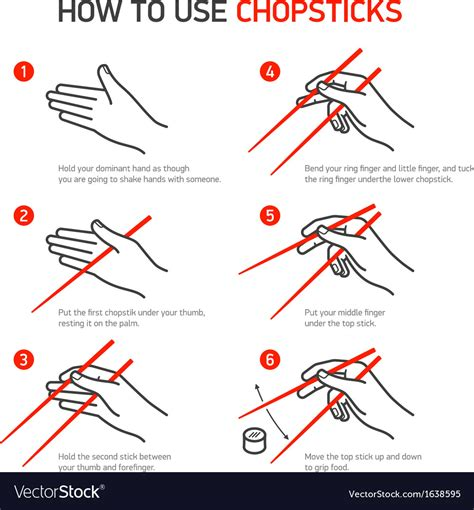 How To Use Chopsticks Guidance Royalty Free Vector Image