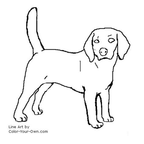 Beagle Kleurplaat by Beagle Coloring Page