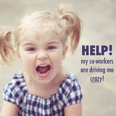 Crazy Coworker Meme - what to do when your co workers drive you crazy levo