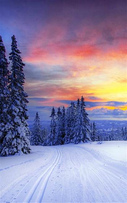 Winter Iphone Snow Norway Forest Trees Wallpapers