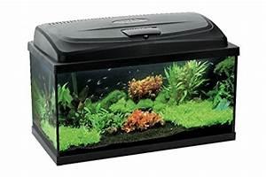 Komplett Aquarium Kaufen : aquael aquarium set leddy led 100 200 liter komplett aquarium mit moderner led technik ~ Eleganceandgraceweddings.com Haus und Dekorationen
