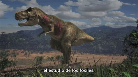 dinosaurios cuenca seonegativocom