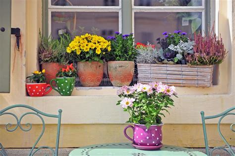 beautiful window   house stock photo image  front