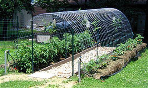 cool diy greenhouses  plans  tutorials shelterness