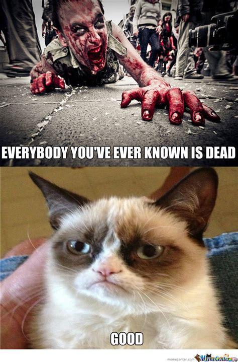 Zombie Memes - funny zombie memes the best zombie memes online