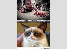 Funny Zombie Memes : Tv series zombie apocalypse moln movies and tv 2018