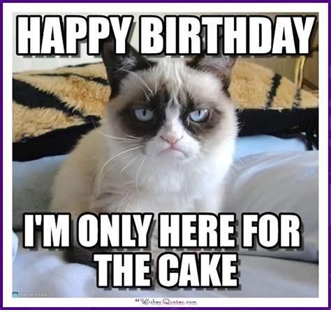 Funny Cat Birthday Meme - 450 best happy birthday images on pinterest invitations birthdays and cards