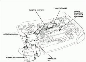 1996 Honda Civic Ex Engine Diagram