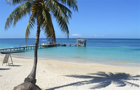 Glass Bottom Boat West Palm Beach by Hyde Tours Roatan Beach Excursions