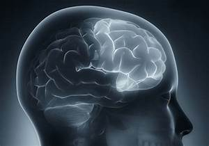 Damages Caused By A Brain Injury To The Frontal Lobe