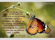 Dag 11 Bybelvers Psalm 1031213 Die Boodskap So ver as