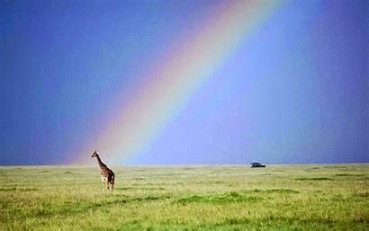 Wallpapers Rainbows Rainbow Desktop Nature Backgrounds Pc