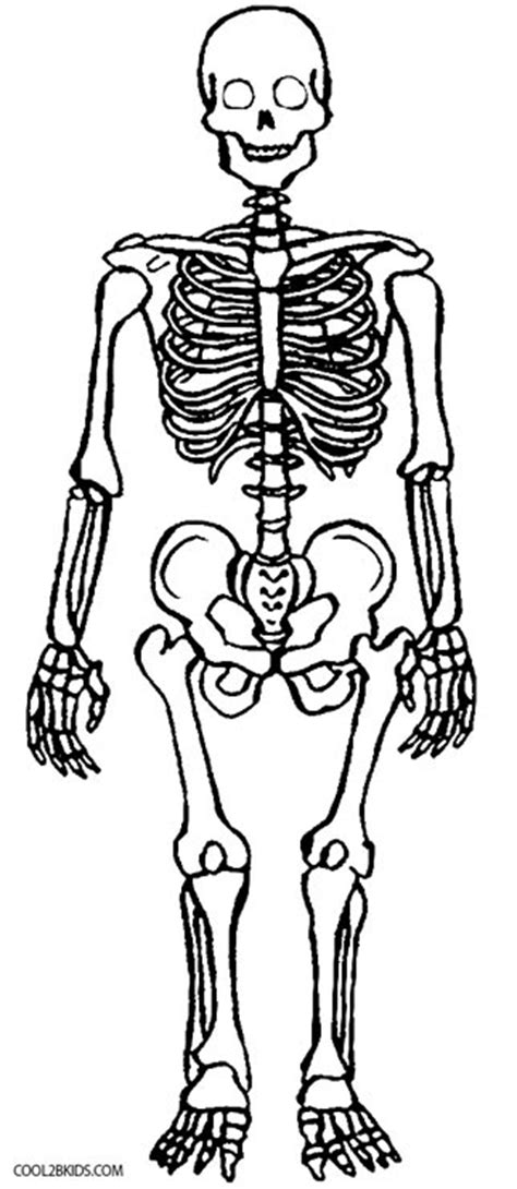printable skeleton coloring pages  kids coolbkids