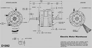 New Wiring Diagram Ac Fan Motor  Diagramsample