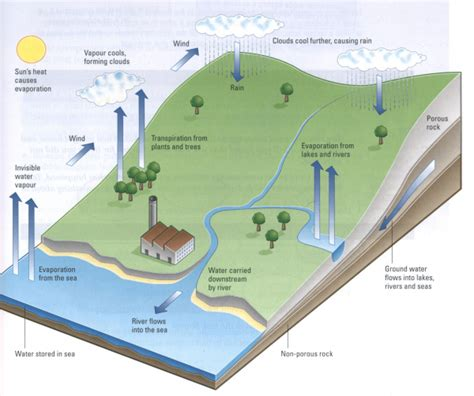 Diagram Of A Water by The Diagram Below Shows How The Water Cycle Works