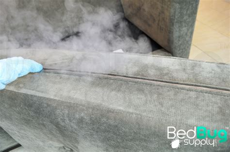 how to get rid of bed bugs on couches and furniture