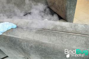 How to get rid of bed bugs on couches and furniture for How to get rid of bed bugs in sofa