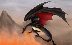 Celebrity Wallpapers and Pictures Pokemon Pictures: Black ...