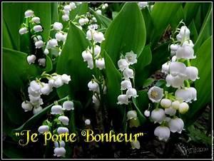 dansespluriel joyeux 1er mai With affiche chambre bébé avec bouquet de fleurs muguet