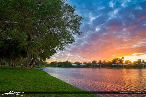 palm gardens sunset homes