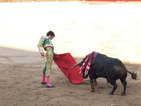 A Brief History Of Bullfighting In Seville