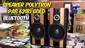 Speaker Polytron Pas 62 B  Gold