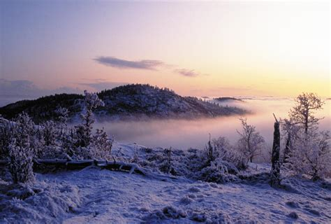 landscaping in winter image archive beha