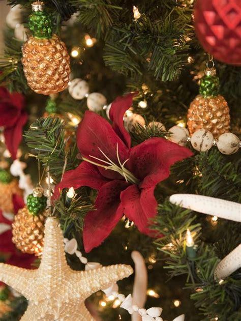 tropical christmas ideas   pinterest